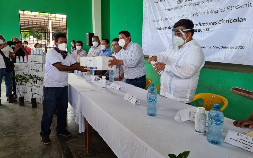 Gobierno de Veracruz y SENASICA combaten langosta centroamericana en Huasteca